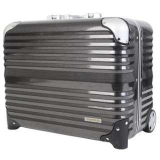 TSAロック搭載スーツケース 横型ビジネスキャリー(31L) 6200-44 カーボン