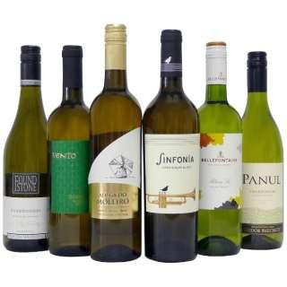 [送料無料] 世界の辛口白ワイン お買い得6本セット (750ml/6本)【ワインセット】