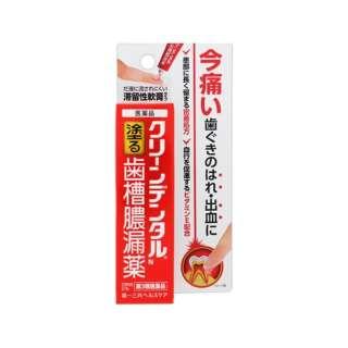 【第3類医薬品】 クリーンデンタルN歯槽膿漏薬(8g)