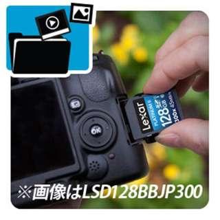 SDHCカード Lexar Platinum II 300X LSD32GBBBJP300 [32GB /Class10]