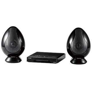 テレビ用スピーカー ノーブルブラック TW-D9HDM [Bluetooth対応]