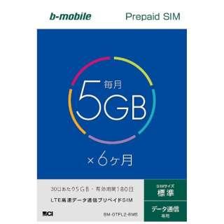 標準SIM 「b-mobile 5GB×6ヶ月SIMパッケージ」 プリペイド・データ通信専用・SMS非対応 BM-GTPL2-6MS