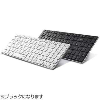 E9100P キーボード rapoo ブラック [USB /ワイヤレス ]