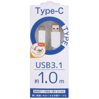 1.0m[USB-C ⇔ USB-A]3.1ケーブル 充電・転送 ホワイト CK-C04WH
