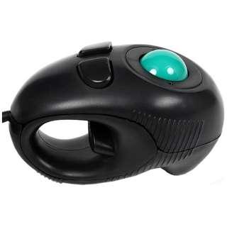 GM-OPTB02 マウス ブラック [光学式 /4ボタン /USB /有線]