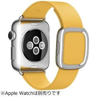 ビックカメラ com アップル apple apple watch 38mm 用交換バンド