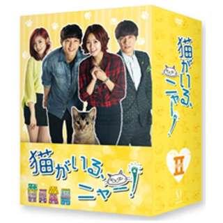 猫がいる、ニャー! DVD BOX II 【DVD】