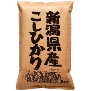 新潟県産こしひかり 5kg【お米】
