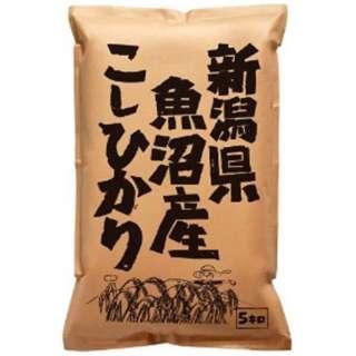 新潟県魚沼産こしひかり 5kg【お米】