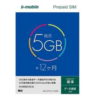 標準SIM 「b-mobile 5GB×12ヶ月SIMパッケージ」 プリペイド・データ通信専用・SMS非対応 BM-GTPL3-12MS