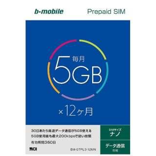 ナノSIM 「b-mobile 5GB×12ヶ月SIMパッケージ」 プリペイド・データ通信専用・SMS非対応 BM-GTPL3-12MN