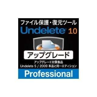 Undelete 10J Professional アップグレード【ダウンロード版】
