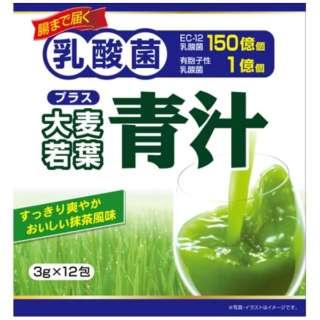 大麦 若葉 青 汁