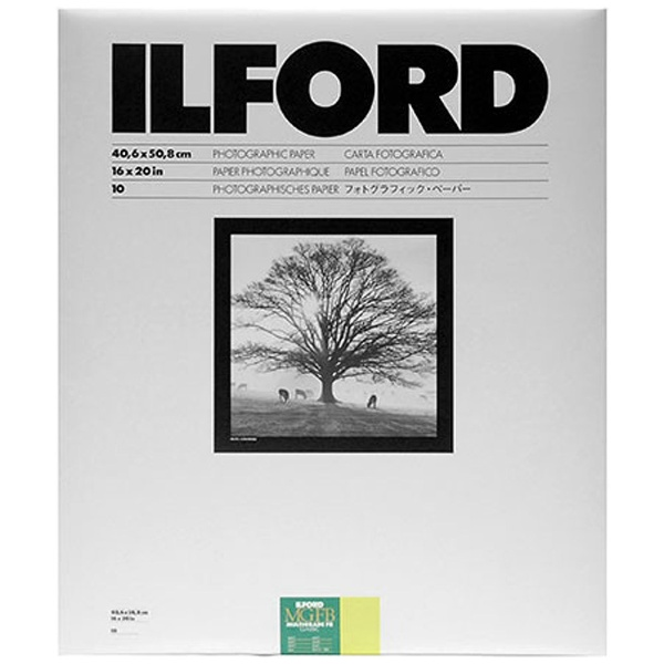 イルフォード マルチグレードFBクラシック 5K Matt無光沢 小全紙16×20インチ 10枚入 MGFB 5K 16X20 10