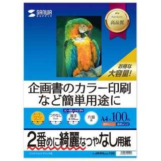 インクジェットスーパーファイン用紙[インクジェット /A4サイズ /100枚] JP-EM4NA4N-100