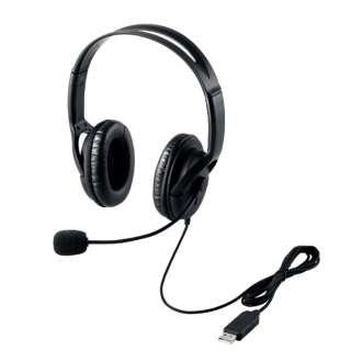 HS-HP28UBK ヘッドセット ブラック [USB /両耳 /ヘッドバンドタイプ]
