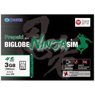 BIGLOBE NINJA SIM nanoSIM 3GB