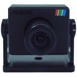 MICRO VIEW カラーCCDカメラ CK-300B ブラック