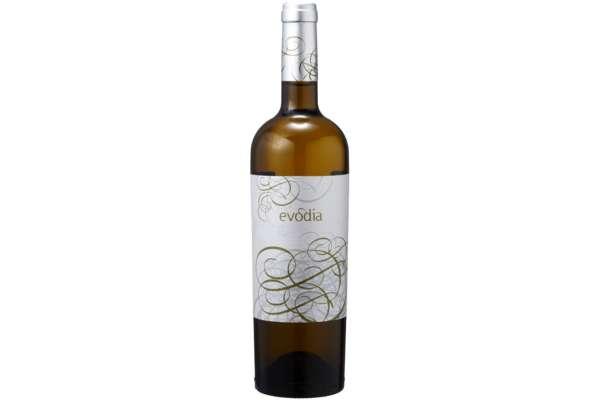ワインのおすすめ15選 スペイン「ボデガス・サン・アレハンドロ エヴォディア ブランコ 」(750ml)