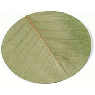 干朴葉懐敷(緑)100枚入 25994 丸型(大) <QHO1301>