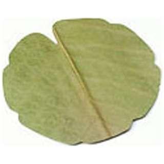 干朴葉懐敷(緑)100枚入 25995 丸型(小) <QHO1302>