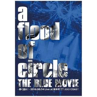 a flood of circle/THE BLUE MOVIE -青く塗れ!- 2016.06.04 Live at 新木場STUDIO COAST 10thアニバーサリーパックBlu-ray盤(初回生産限定) 【ブルーレイ ソフト】
