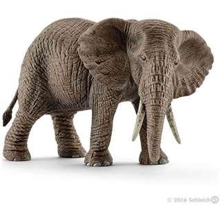 シュライヒ 14761 アフリカ象 メス
