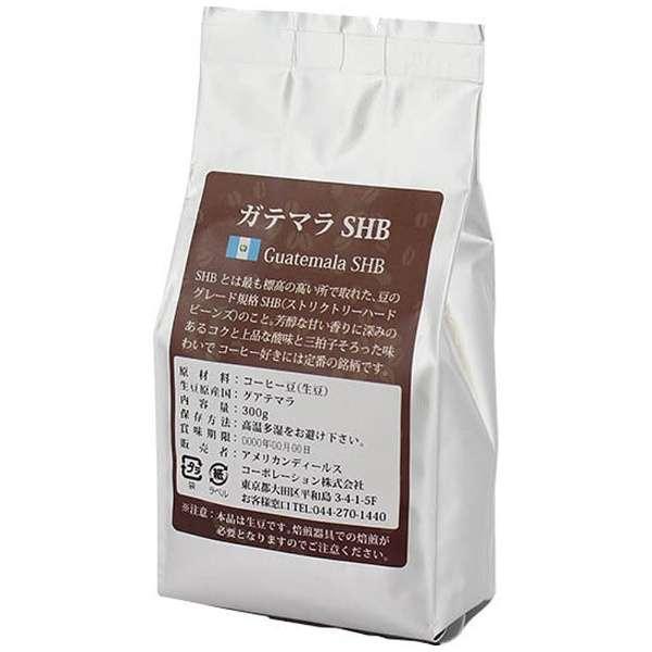 コーヒー生豆 ガテマラSHB