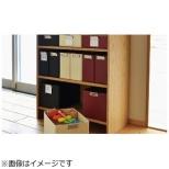 [ケース] クリップボックス A4 ブラック TAB0120-BK