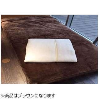 シンサレート毛布(ダブルサイズ/180×210cm/ブラウン)