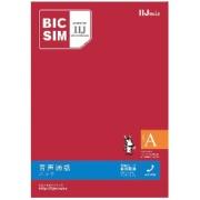 「BIC SIMタイプA」 音声通話+データ通信 IMB160 ※SIMカード後日発送