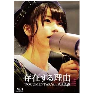 存在する理由 DOCUMENTARY of AKB48 スペシャル・エディション 【ブルーレイ ソフト】
