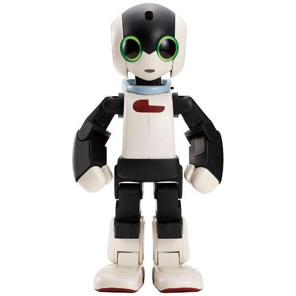 DMM.make ROBOTS [Robi 動きや声、仕草がとっても愛くるしいロボット] [RBHM0000000545731927]【STEM教育】