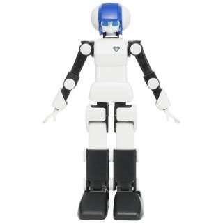 DMM.make ROBOTS [プリメイドAI 世界最高水準 ダンスコミュニケーションロボット] [RBHM0000000445731927]【STEM教育】
