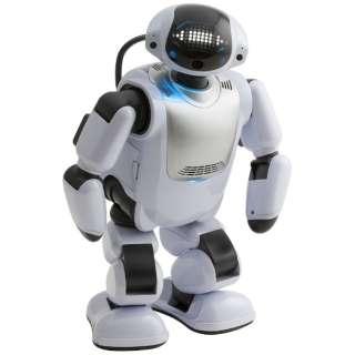 DMM.make ROBOTS [Palmi RBHM 共に成長するロボット9] [RBHM0000000145731927]【STEM教育】