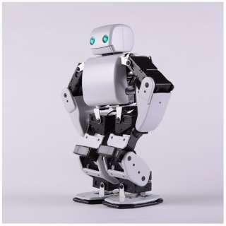 DMM.make ROBOTS [Plen D 運動神経バツグンのロボット] [RBHM0000000345731927]【STEM教育】