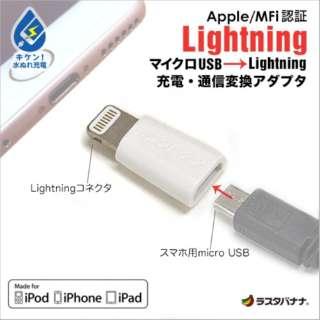 変換アダプタ MFi認証[micro USB → Lightning] ホワイト RBMFI052