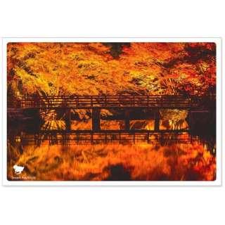 日本の絶景ポストカード 『秋』 (岩屋堂公園/愛知) JPC-18