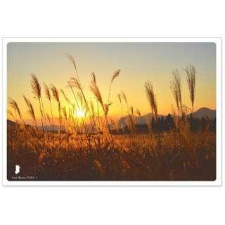 日本の絶景ポストカード 『秋』 (秋の曽爾高原/奈良) JPC-25