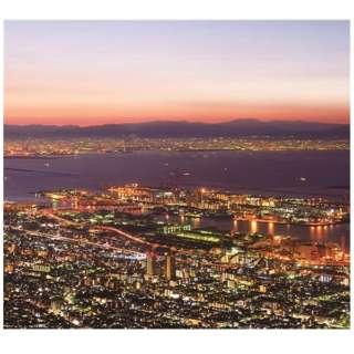 (V.A.)/IN YA MELLOW TONE GOON TRAX 10th Anniversary Edition 4-6 BOX SET 【CD】