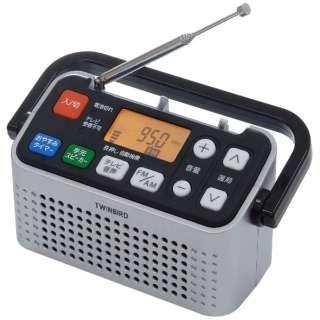 AV-J127 携帯ラジオ シルバー [テレビ/AM/FM /ワイドFM対応]