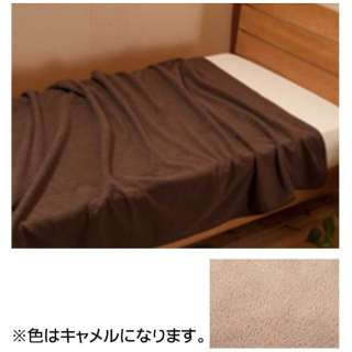 毛布 エバーウォーム(ダブルサイズ/180×200cm/キャメル)【日本製】