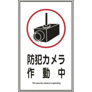 ビックカメラ.com   日本緑十字 ...