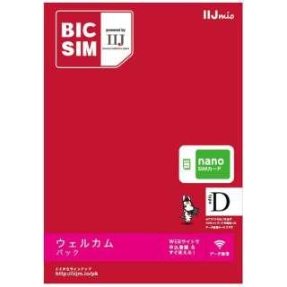ナノSIM 「BIC SIM」 データ通信専用・SMS非対応 IM-B171