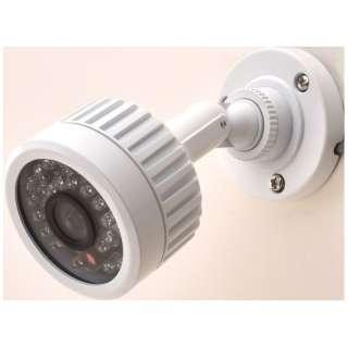 アナログ対応カラー監視カメラ【赤外線投光器内蔵・防水タイプ】 SEC-G710
