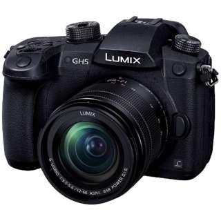 LUMIX GH5【標準ズームレンズキット/ミラーレス一眼カメラ】 DC-GH5M-K