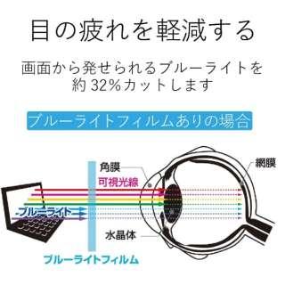 電子辞書用液晶保護フィルム (ブルーライトカット/シャープ ブレーン(Brain)PW-SB4、PW-SA4、PW-SH4、PW-SJ4シリーズ用/1枚入り) DJP-TP029BL