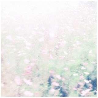 Chihei Hatakeyama + Hakobune/The fall rises 【CD】