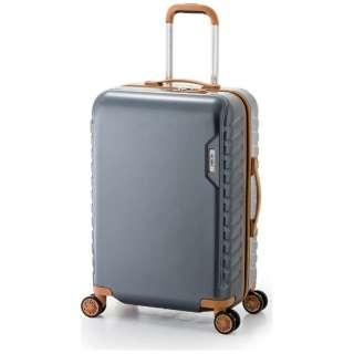 スーツケース ハードキャリー 50L MAXSMART(マックススマート) ガンメタ MS-202-25 [TSAロック搭載]