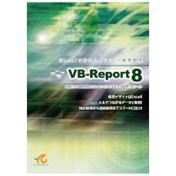 VB-Report 8